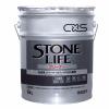 stonelife10.jpg